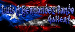 LUIS A HERNANDEZ PARDO GALLERY